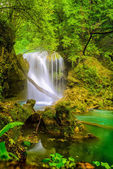 La Vaioaga Waterfall, Beusnita National Park, Romania — Stock Photo
