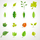 Leaves Vectors Set — Stock Vector