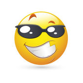 Smiley Emoticons Face Vector - Handsome Expression — Stock Vector