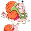 Snail Illustrations - Stock vektor