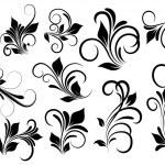Floral Vectors — Stock Vector