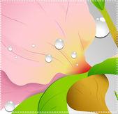 Flourish Vector Pink Background — Stock Vector