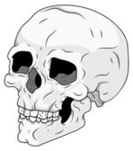 Skull Vector Stock Illustration — Stock Vector