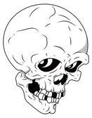 Royalty Free Vector - Skull — Stock Vector