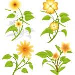 Set of Vector Flowers — Stock Vector