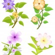 Set of Flowers Vector — Stock Vector