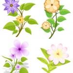 Set of Flowers Vector — Stock Vector