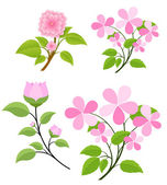 Flowers Branches Vectors — Stock Vector
