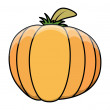 Stock Vector: Pumpkin vector illustration
