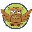 Owl vector illustration — Stock Vector