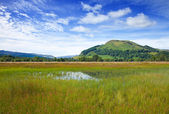 Marshy plain between Loch Tay and confluence of the rivers Docha — Stock Photo
