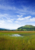 Marchy plain between Loch Tay and confluence of the rivers Docha — Stock Photo