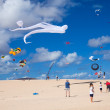 Royalty-Free Stock Photo: FUERTEVENTURA, SPAIN - NOVEMBER 09: Schoolkids fly little pink k