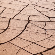 Natural background of cracked earth — Stock Photo #15385901