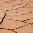 Natural background of cracked earth — Stock Photo #15385903
