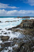 Fuerteventura, isole canarie — Foto Stock