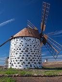 Windmills, Fuerteventura — Stock Photo
