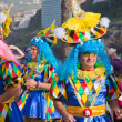 PUERTO DE LA CRUZ, SPAIN - February 16: Colorfully dressed parti — Stok fotoğraf