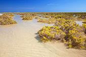 Southern Fuerteventura, Jandia — Stock Photo