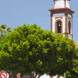 Stock Photo: Inland Central Fuerteventura, church in Antigua
