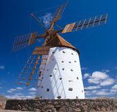 Northern Fuerevnetura, windmill — Stock Photo