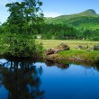 Scotland, summer landscape — Stock Photo #26780271