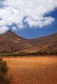 Central Fuerteventura, Barranco de las Penitas — Stock Photo