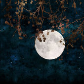 Volle maan collage — Stockfoto