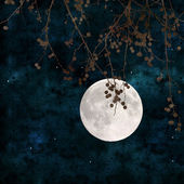 Full moon collage — Stock Photo