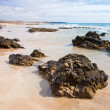 Northern Fuerteventura, Playa del Castillo beach — Stock Photo #27903333