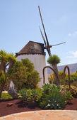Central Fuerteventura, windmill — Stock Photo