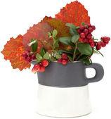 Autumnal stilllife — Stock Photo