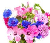 Podzimní kytička — Stock fotografie