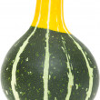 Ornamental gourd — Stock Photo #32663451