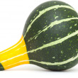 Ornamental gourd — Stock Photo #32663463