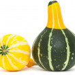Ornamental gourd — Stock Photo #32663527