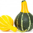 Ornamental gourd — Stock Photo