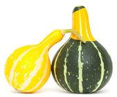 Drunken gourds — Stock Photo