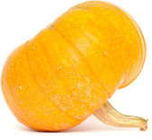 Pumpkin isolated — Stock Photo