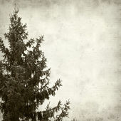Textured old paper background — Foto de Stock