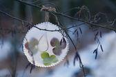 氷の飾り — ストック写真