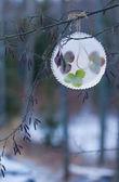 Ice ornament — Stock Photo