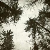 Texturou staré papírové pozadí — Stock fotografie