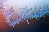 Beautiful frost pattern on window — Stock Photo