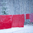 Stock Photo: Santbedlinen