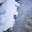 Freezing river — Stock Photo #38917339