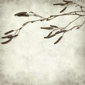 Teksturowanej tło stary — Zdjęcie stockowe