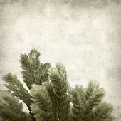 Texture vecchio sfondo di carta — Foto Stock