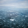 Drift ice — Stock Photo