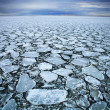 Stock Photo: Drift ice